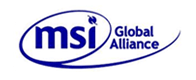 MSI Global Alliance awarded Association of the Year 2013